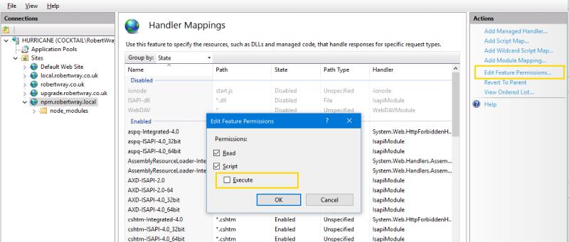 iis node npm install